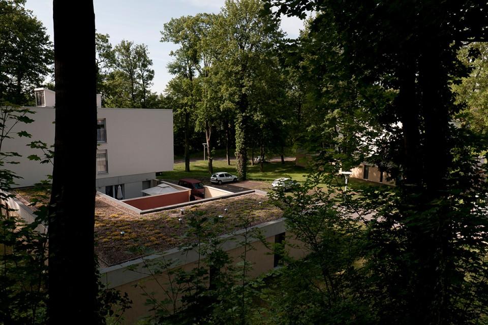 Toitures végétalisées sur logements à Metz-Bellecroix