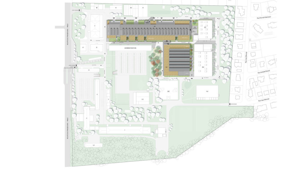 Plan de masse du lycée des métiers à Haguenau